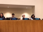 CWGL Faculty Director Presents to Joint Meeting of UN Agency Executive Boards on Inequality
